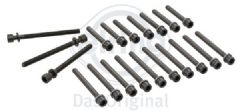 Cylinder Head Bolt Set 2.8 VR6